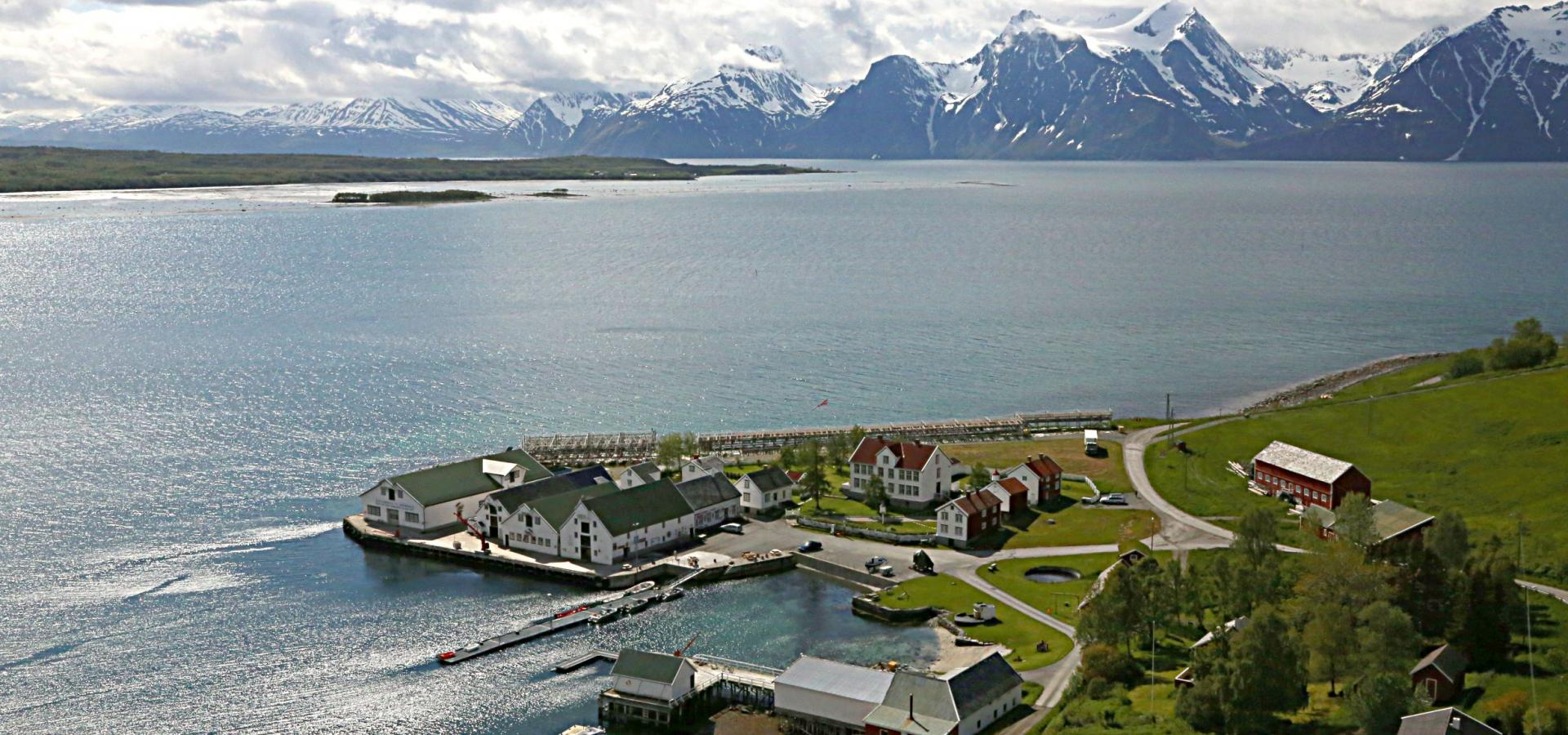 Aerial view of the trading post Havnnes Handelssted, with the fjord and Lyngen Alps in the background