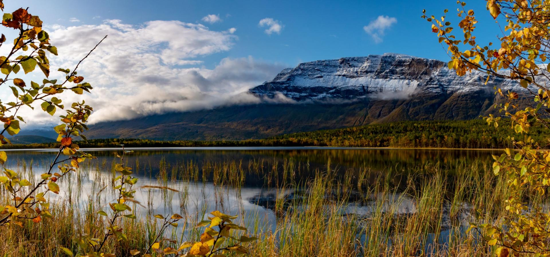 Lake with autumn leaves in the foreground and snowcapped mountains in the background