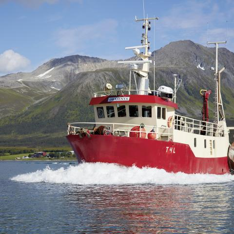 Red fishing vessel at sea