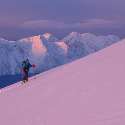 January ski touring in twilight, view of the fjord and Lyngen Alps