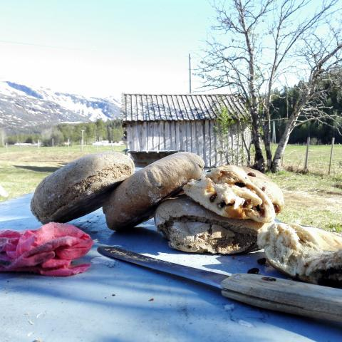 Delicious Kven baking - bread on a table