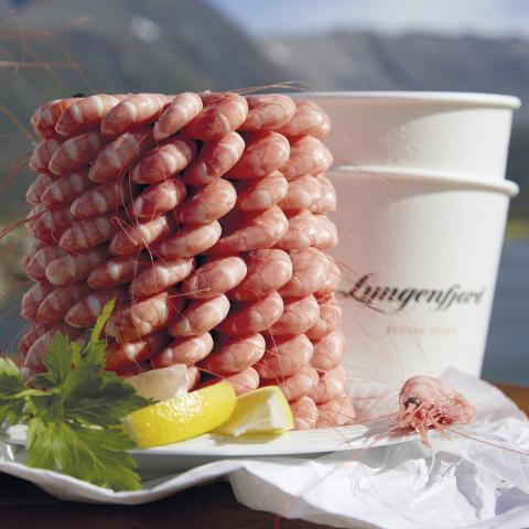 Lyngen shrimp pyramid outside in the sun