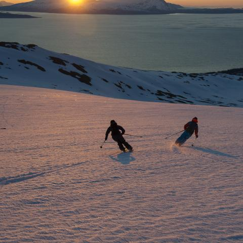 Ski touring in the Lyngen Alps under the midnightsun