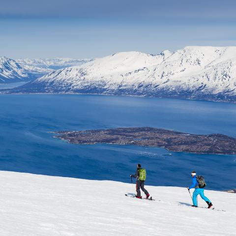 Ski touring in the Lyngen Alps with a view of the Lyngenfjord