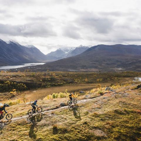 3 mountainbikers along a path - autumn colours